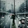 或る雨の日の出来事②